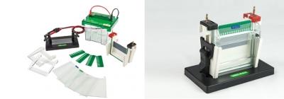 Cuba Vertical de electroforesis Marca Numak, modelo SCZ2+