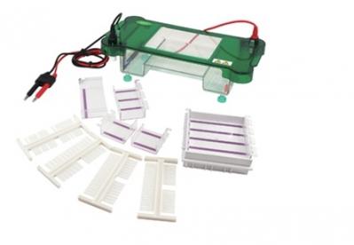 Cuba horizontal para Electroforesis. Marca Numak, modelo SPCT